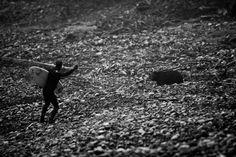 Surfer and Bear, photo taken by Jeremy Koreski