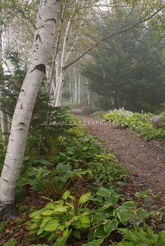 Note natural path ma