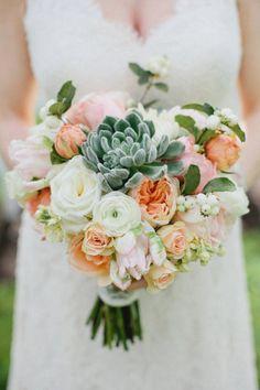 peach and succulents Photography by Kristyn Hogan / kristynhogan.com