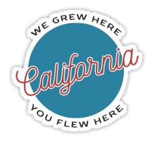 BRANDY MELVILLE CALIFORNIA Sticker