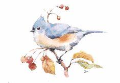 Titmouse aquarelle  création originale de Bird 65 par CMwatercolors
