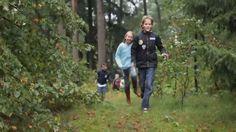Landal Miggelenberg | Bungalowpark Hoenderloo - Veluwe, Gelderland