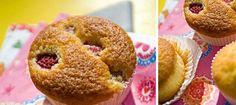 Petits gâteaux au citron ou aux framboises