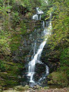 Reedy Branch Falls, South Carolina