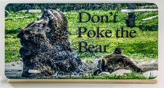 Don't Poke The Bear License Plate, hunting sign, cabin decor, man cave, most sold item, most popular best selling gifts for him dad husband by PicturesFromHeaven on Etsy