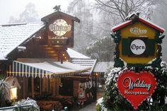 The Cuckoo Restaurant in Olinda ( Mount Dandenong)
