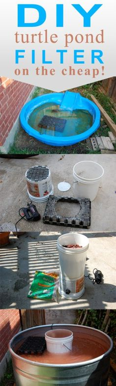Pet Turtle Pond With DIY Filter. Your pet turtle deserves a great home. Create a nice habitat in the backyard DIY style! Tortoise Habitat, Turtle Habitat, Turtle Care, Pet Turtle, Turtle Enclosure, Aquatic Turtles, Water Turtles, Red Eared Slider Turtle, Turtle Pond