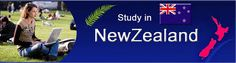 Want to know why study in New Zealand could be a good idea? Continue reading to know more about the scholarships to study in New Zealand and various other aspects of education in the country.