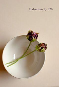 ナチュラルな暮らし。: 布花 Diy Ribbon Flowers, Silk Flowers, Rose Crafts, Fabric Roses, Handmade Flowers, Botanical Art, Artificial Flowers, Corsages, Create