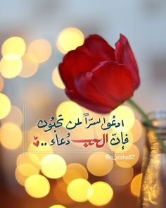 Arabic Quotes, Islamic Quotes, Best Titles, Duaa Islam, Arabic Language, Sunset Photography, Mood Quotes, Positive Thoughts, Allah