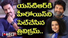 Jr NTR and Trivikram Project l Mehreen confirmed as heroine l latest film news l RECTVINDIA