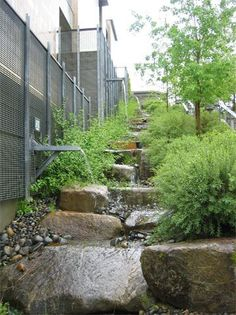 Beautiful natural drainage system (NDS) in action at Kitsap County Administration Building in Port Orchard, WA. By SvR Design Co.