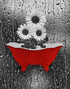 Red Gray Sunflower Bathtub Bathroom Home Decor Wall Art Matted Picture  Status: Available!  ...