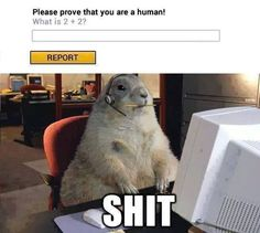 They got me // funny pictures - funny photos - funny images - funny pics - funny quotes - #lol #humor #funnypictures