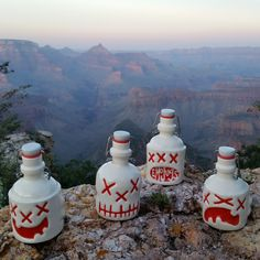 Burlon, Yorick, Otto, and Bullock admiring the gorgeous view of the Grand Canyon at sunset.