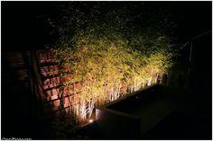 Terrasse Project : Création de deux grands bacs à bambous...