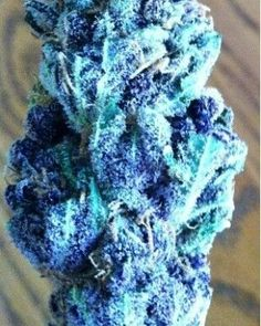 Good quality Medications  Top Buds harsh, shatter, Concentrate. Minimum order prices start from $150 - Good and affordable prices.  - Fast and Reliable delivery -Tracking Available!  - Various s hipping option (Overnight and Airmail).  - No Prescription Required!  - Buy Direct and Save Time and Money!  - 100% Customer Satisfaction Guaranteed!  Meds of top quality sativa strains and many more tabs. Minimum order starts from $150.... Serious inquiries only.  hmu  kiks... Kims001 email…