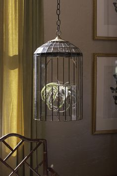 This terrarium is an elegant way to bring the green house inside. It's made with brass, hand blown glass and salvaged clear glass. Custom Stained Glass, Stained Glass Lamps, Stained Glass Panels, Stained Glass Projects, Hanging Glass Terrarium, Glass Planter, Hanging Bird Cage, Glass Conservatory, House Lamp
