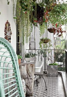 Hängepflanzen sorgen für ein Jungle-Feeling auf deinem Balkon