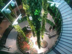 Green Walls, Aquarium, Around The Worlds, Goldfish Bowl, Aquarium Fish Tank, Aquarius, Fish Tank