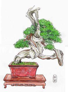 illustrations d'Hervé Dora