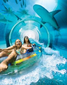Grab your tube and check out the best slides, rides and pools for a whole day of family fun.