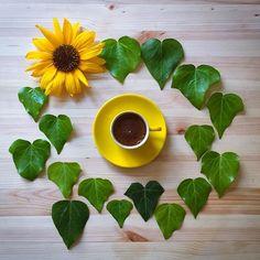 #кофе #цветы #coffee #flowers