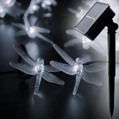 LED SopoTek led string 30 LED 2 Modes Dragonfly Solar Fairy String Lights,waterproof solar led christmas lights,indoor and Outdoor, Gardens Wedding Christmas Party decrations(Warm white) Led Christmas Lights, Outdoor Christmas, Christmas Wedding, Solar Led String Lights, Christmas Party Decorations, Garden Wedding, Light Colors, Outdoor Gardens
