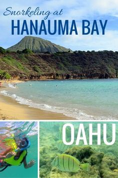 Snorkeling at Hanauma Bay Nature Preserve in Oahu with kids | Hawaii with kids