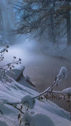Winter Szenen, Winter Love, Winter Magic, Winter Walk, Winter Photography, Landscape Photography, Nature Photography, Travel Photography, Snow Scenes