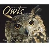 "Phenomenal photography supports the text of this book. Great for any owl lover. It's definitely for the older reader as there aren't the typical nonfiction supports in place, but that's part of what makes it a ""next step"" for mature intermediate readers."
