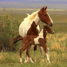 Mom and baby
