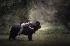dogs, kids, photos, heartwarming