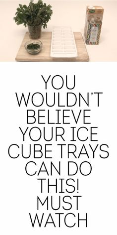 You Wouldn't Believe Your Ice Cube Trays Can Do This! MUST WATCH!