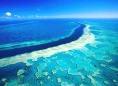 #greatbarrierreef #australia #downunder by awesome__sights http://ift.tt/1UokkV2