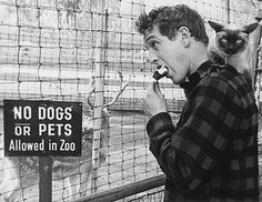 paul newman and animals | Paul Newman avec un chat sur son épaule, en train de manger une glace ...