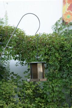 Gartenstecker-Gartenlaternenhalter 1-fach aus Edelstahl für Vogelhaus und Speckknödel L2500 D=10mm mit Bodensteckrohr V2A: Amazon.de: Garten