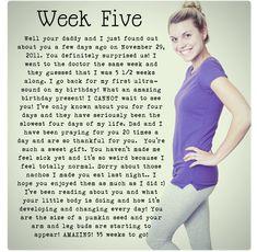 Week 5 baby bump. Pregnancy Journal. Maternity.