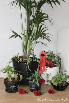 Urban Jungle Bloggers: Creative Plant Pots by @reveetoiles