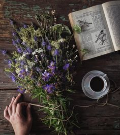 the baker and the wolf Witch Aesthetic, Book Aesthetic, Yennefer Of Vengerberg, Cottage In The Woods, Nature Journal, Simple Pleasures, Book Photography, Flower Power, Beautiful Flowers