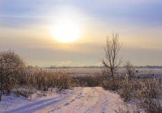 The winter road on sunset - The winter road on sunset