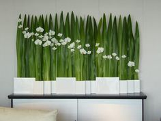 Modern floral design - great for an escort card table, white orchids