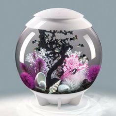 With its hidden waterline, the biOrb HALO 60 is a visually seamless aquarium. The biOrb HALO 60 is the perfect aquarium for anyone new to fish keeping. You can enjoy all the technology of an advanced aquarium set up, supplied in one box.