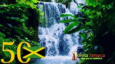 Various Artistes - On A Mission (Official Theme Song for Jamaica 50th In...