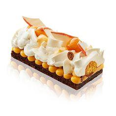 Log Imperial - Laurent Duchene Pastry Meilleur Ouvrier de France Chocolatier and…