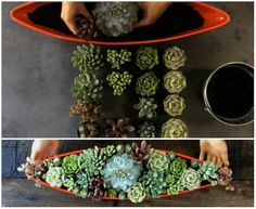 13 Ideas To Decorate Your Home With Nature