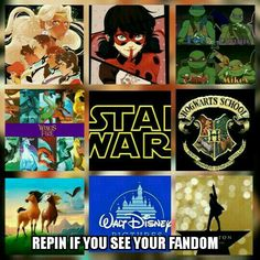 This is basically a picture to sum up all of my fandoms. If you don't know what they are, they're hamilton, disney, spirit stallion of the Cimarron, harry potter, star wars, wings of fire, tmnt, miraculous, and voltron.