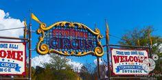 Facebook Cover Photo - Magic Kingdom - New Fantasyland - Storybook Circus Entrance