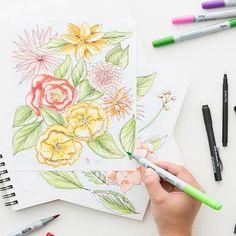 Sketching Online Class