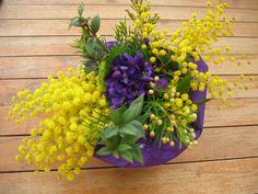 Violettes et mimosas